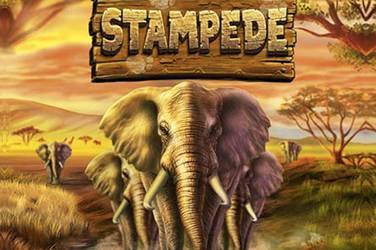 Play Stampede By Betsoft For Free
