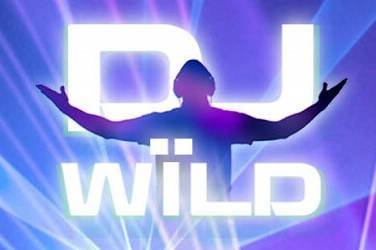 Dj wild slot game