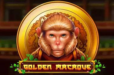 Golden macaque