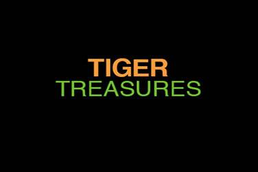 Play Tiger Treasures By Rtg For Free